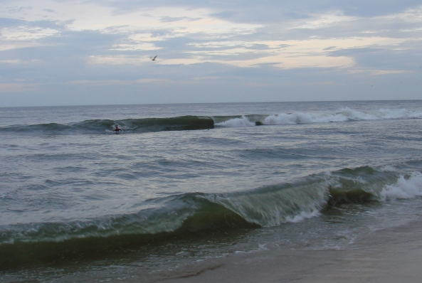 the Skeleton Coast: Va. Beach Surf Check, notes from the Rogue