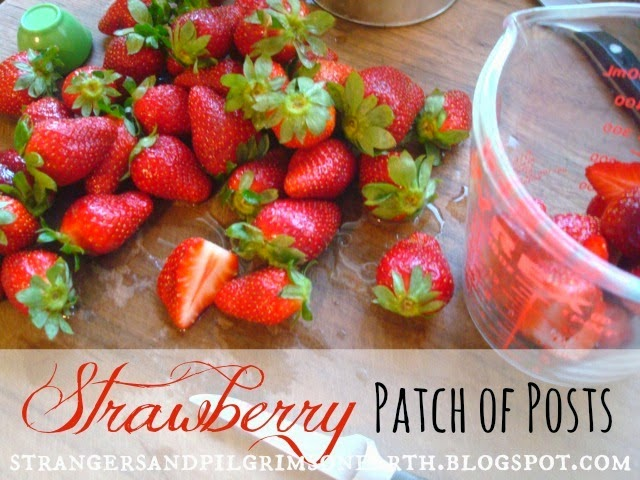 What to Make and Do with Strawberries