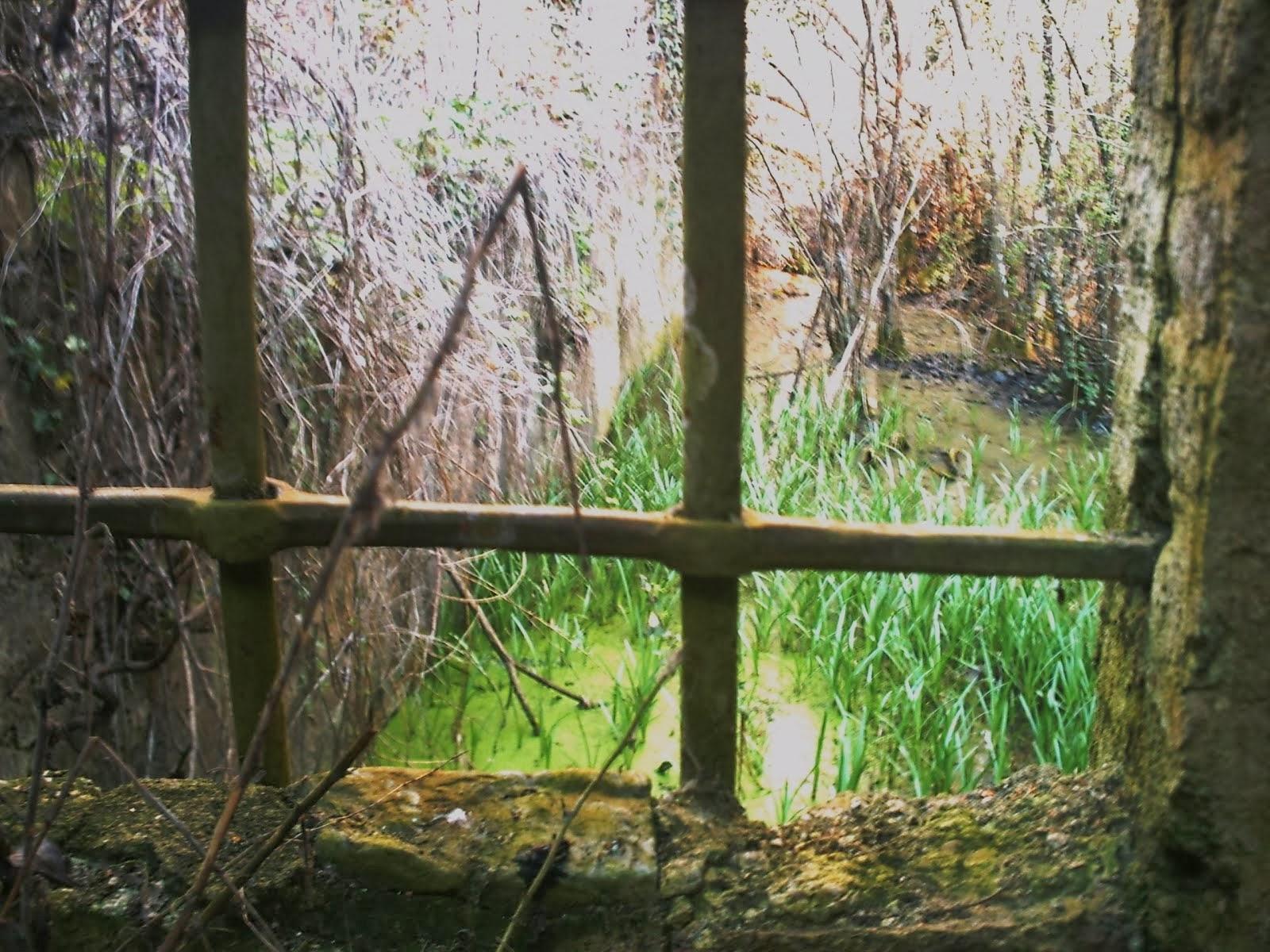 Salida canal central   P.jado-Steve Czwortek