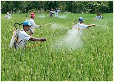 Contoh Analisis Media Cetak Pertanian Peduli Pertanian
