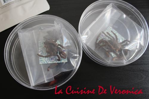 Tarantula 大蘭多毒蜘蛛 昆蟲零食 Insect Snacks