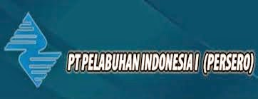 Lowongan Pilot atau Pandu Kapal di Provinsi Nanggroe Aceh Darussalam, Sumatera, Utara, Riau, dan Kepulauan Riau