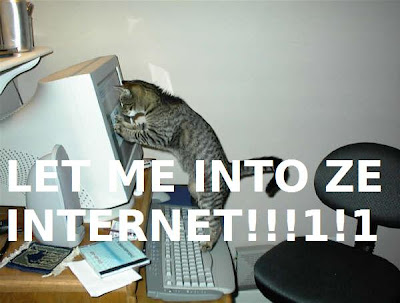 let-me-into-ze-internet-cat-cats-kitten-kitty-pic-picture-funny-lolcat-cute-fun-lovely-photo-images- funny images