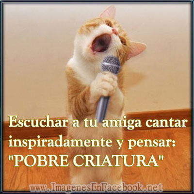 Escuchar a tu amiga cantar