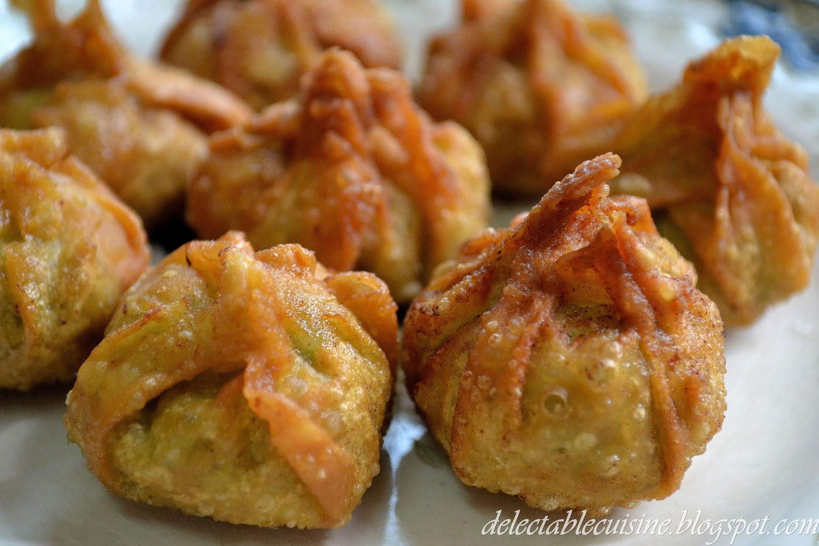 DELECTABLE CUISINE: Chicken & Shrimp Wontons