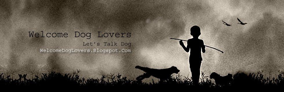 Welcome Dog Lovers - The Dog Blog - Dog Breeds, Training, Adoption & Behavior