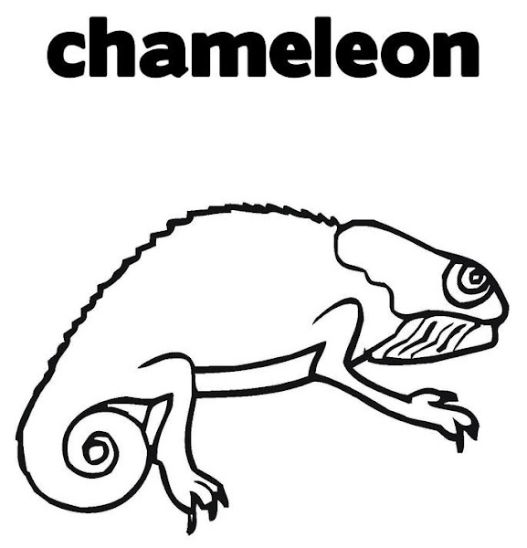 Printable Chameleon Coloring Pages