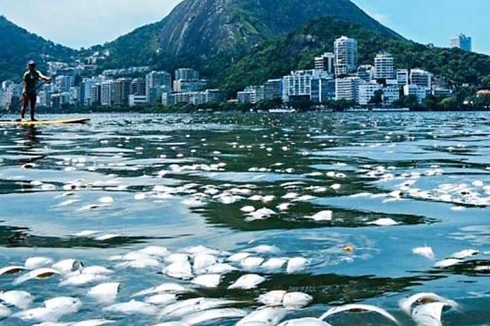 Jornalista alemão analisa inércia do povo carioca diante dos problemas