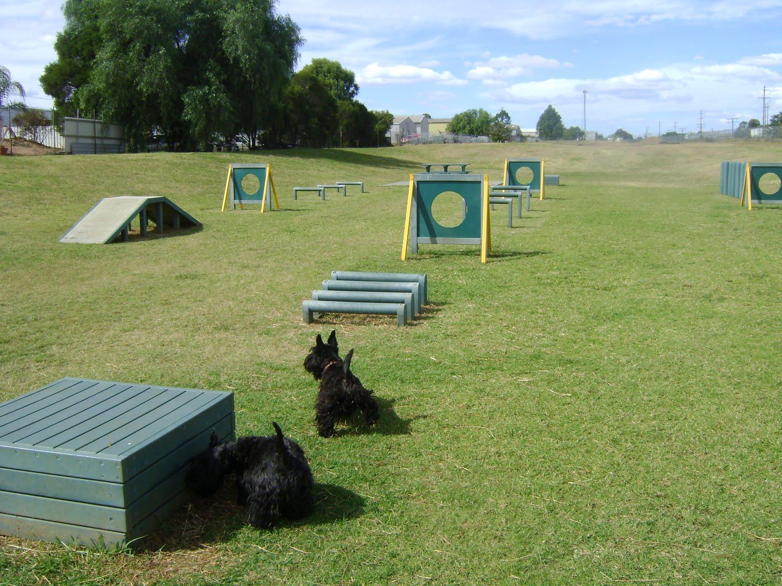 Duncan Dog Park