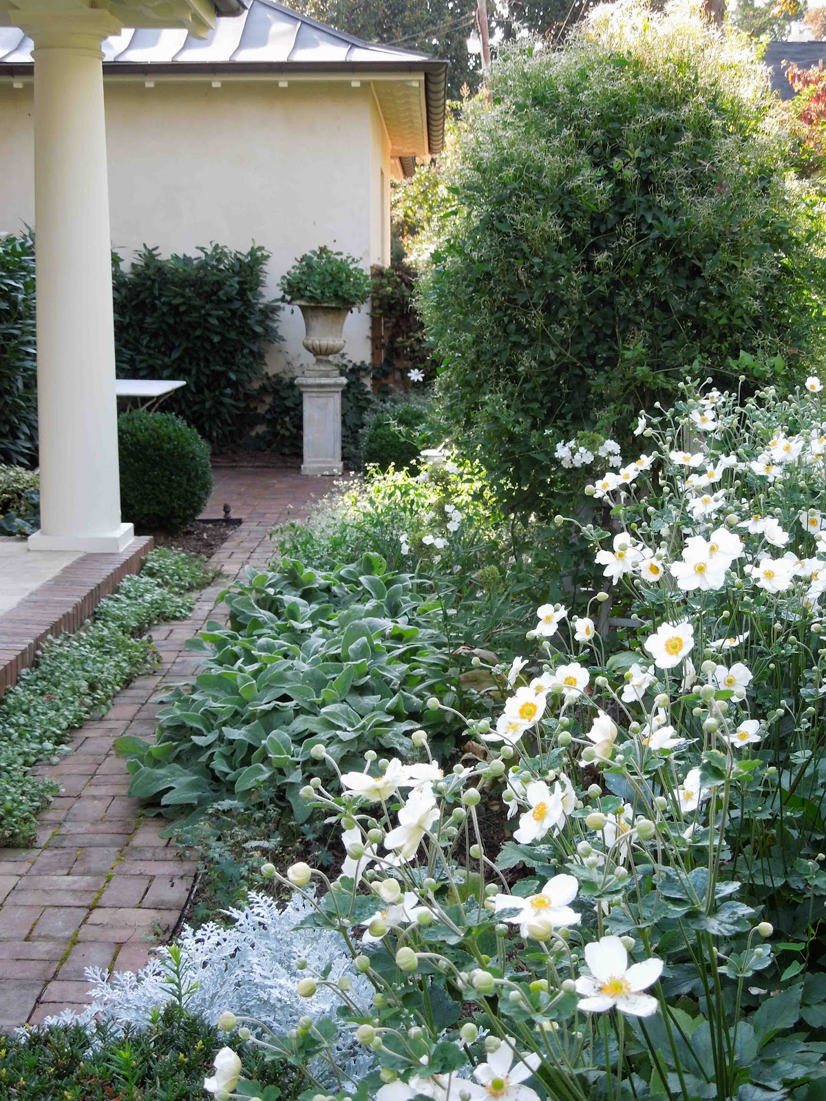 The White Border Is Located On The Right Side, And Features White Flowering  Plants Along With Silvery Gray Foliage.