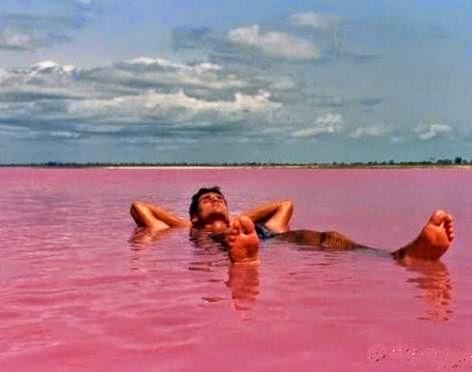 صور لامعه فى اعين الناظرين للبحيرة الوردية التى توجد فى استراليا