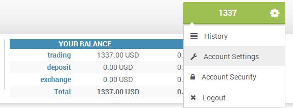 Broker for trading options on margin