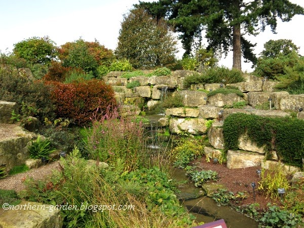 Iu0027ve Read That This Rock Garden Is Home To Alpines And Mediterranean  Climate Plants From Around The World. Rock Gardens Show A Variety Of  Habitats Of ...