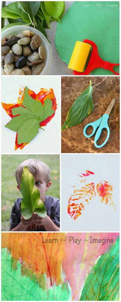 Hands on learning activities with leaves.  Learn with nature including science, math, literacy, and art.