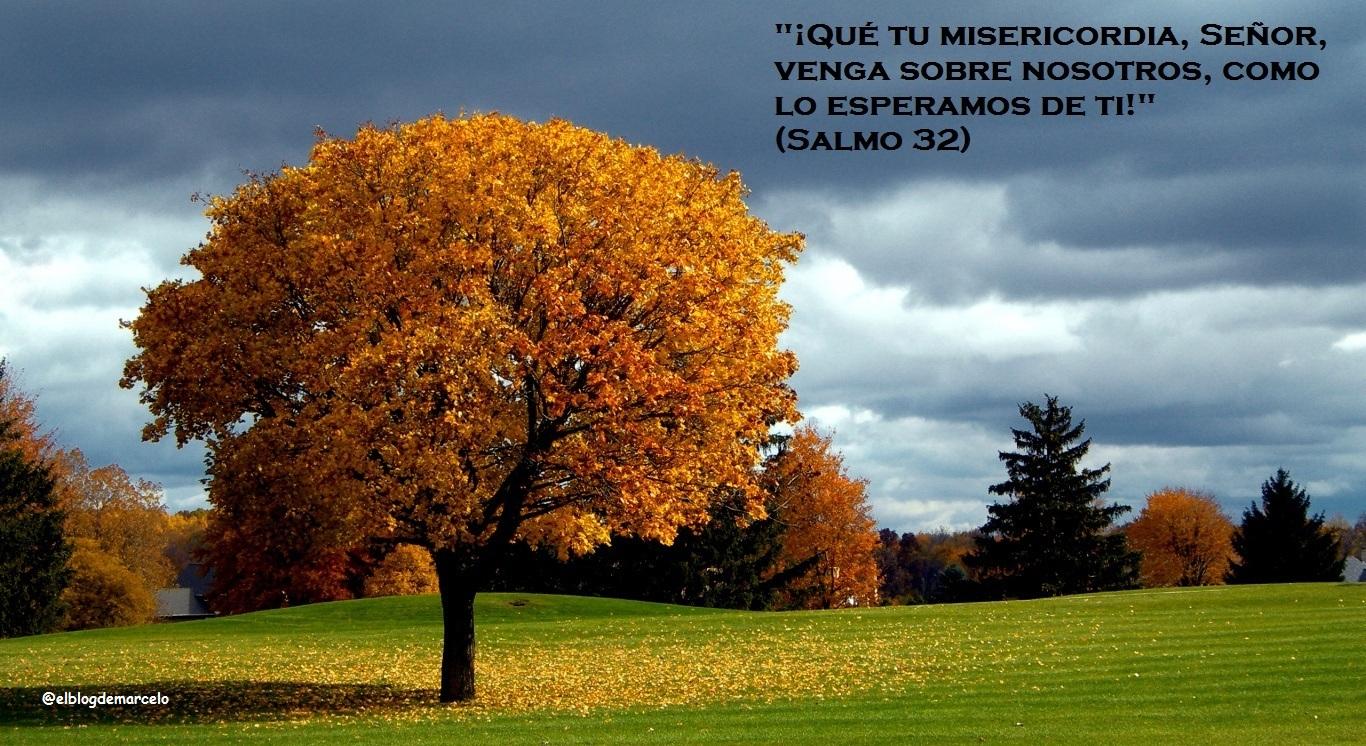 El Blog de Marcelo: ¡Regalo!: 20 paisajes de otoño, 20 frases de ...