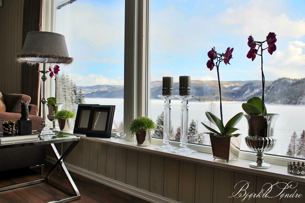 Bjørkli søndre: inspirerende stue?