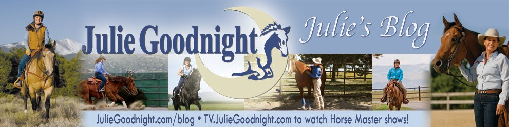 Julie Goodnight On the Road