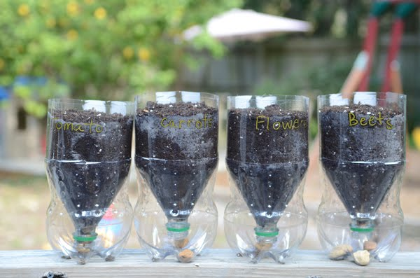 From the Fence Post: Recycled 2 Liter Bottle Planters