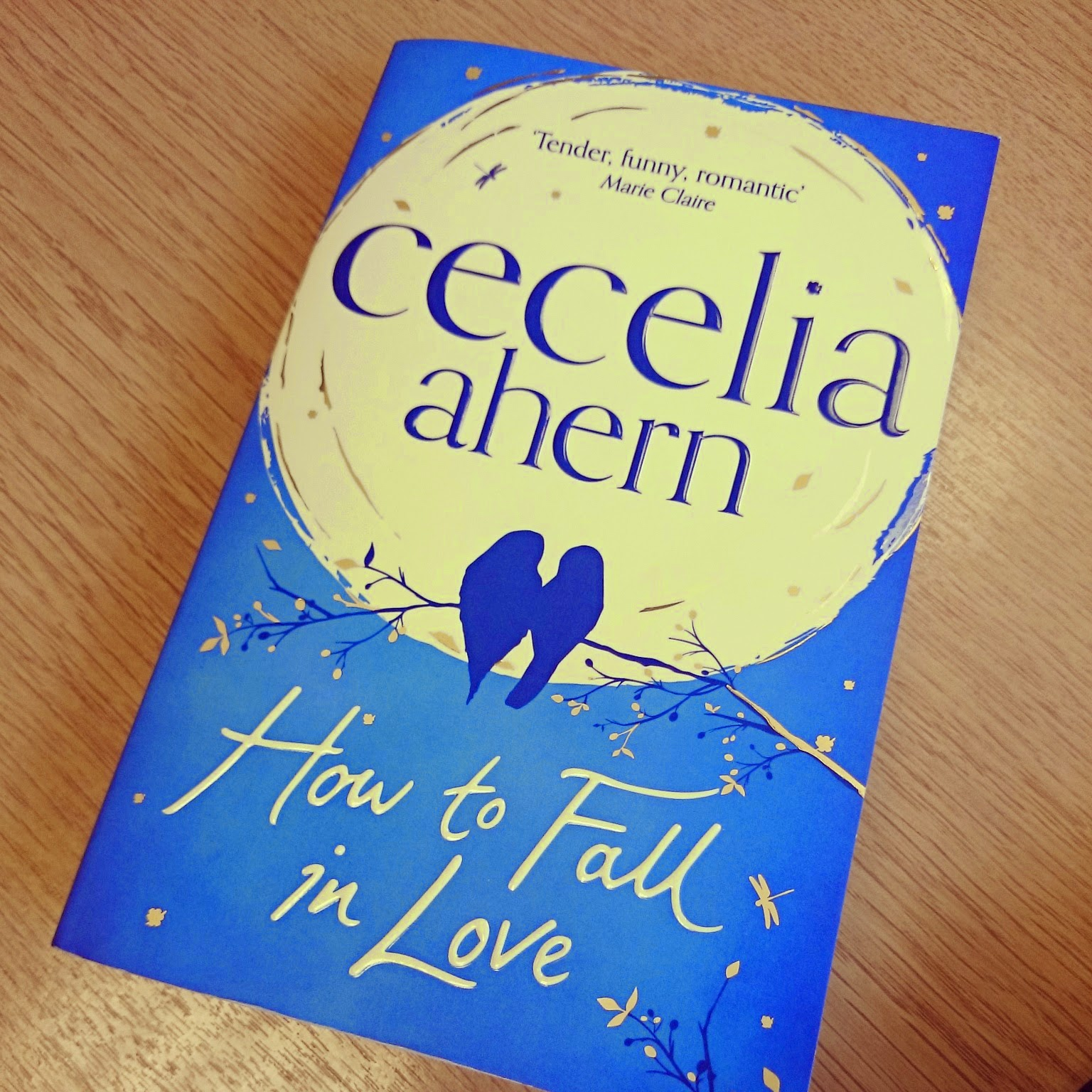 cecelia ahern how to fall in love book review novel romance fiction love story