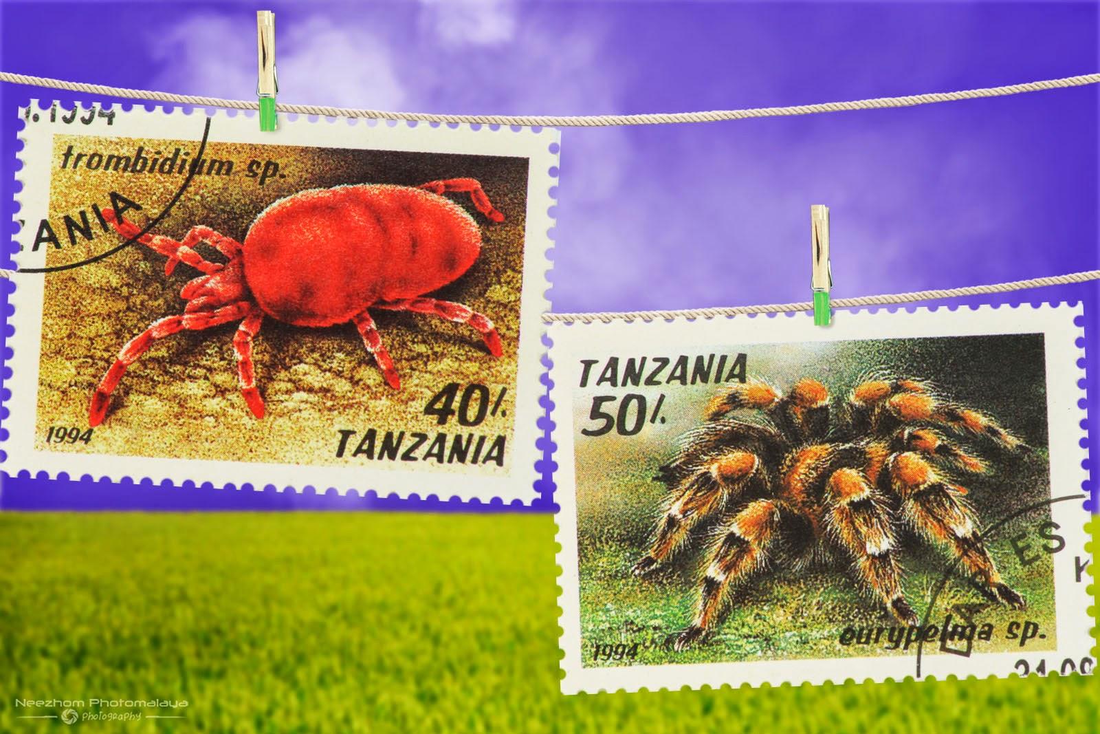 Tanzania Arachnids stamps 1994 - Trombidium sp, Eurypelma sp