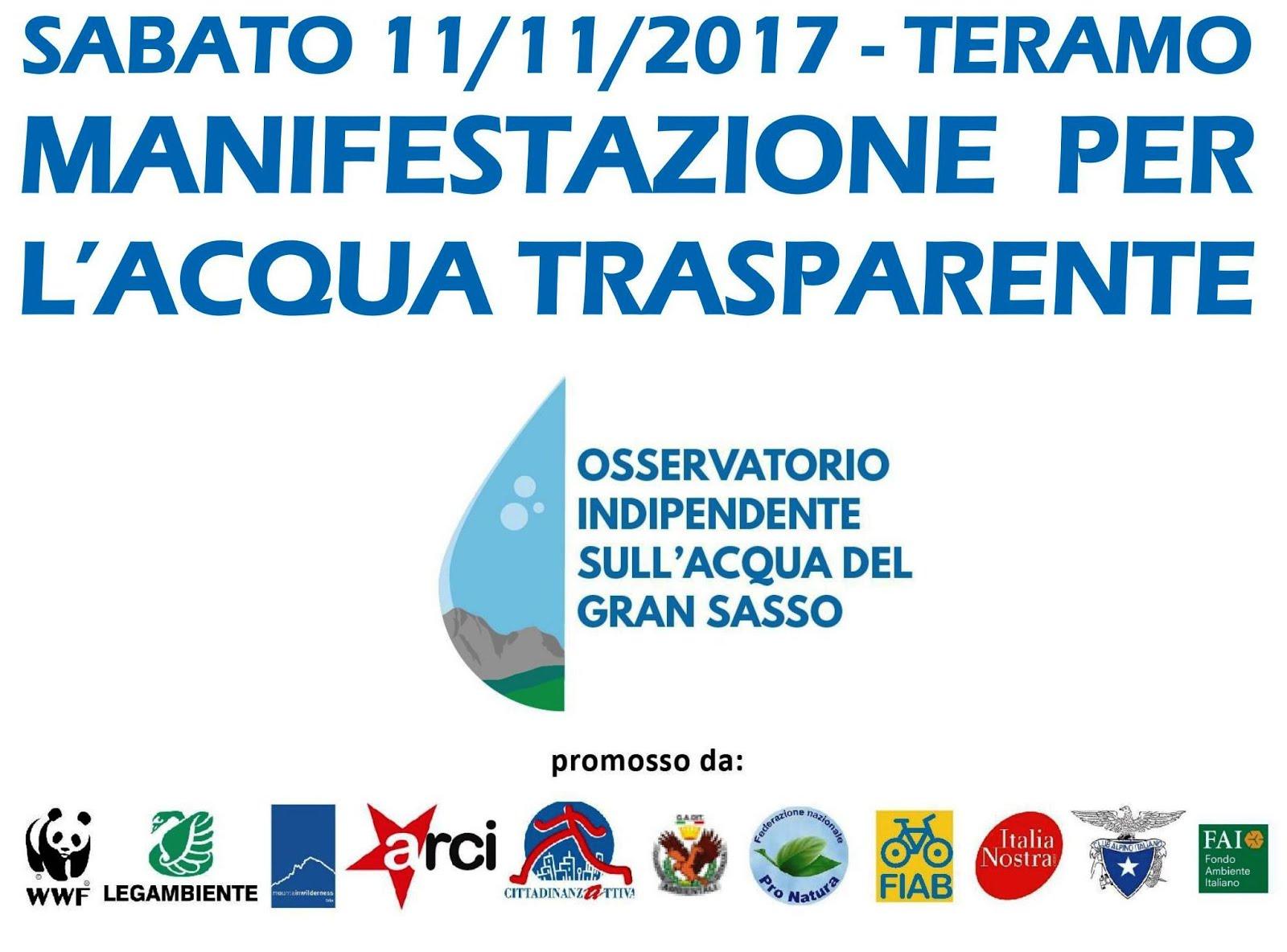 Manifestazione per l'acqua trasparente