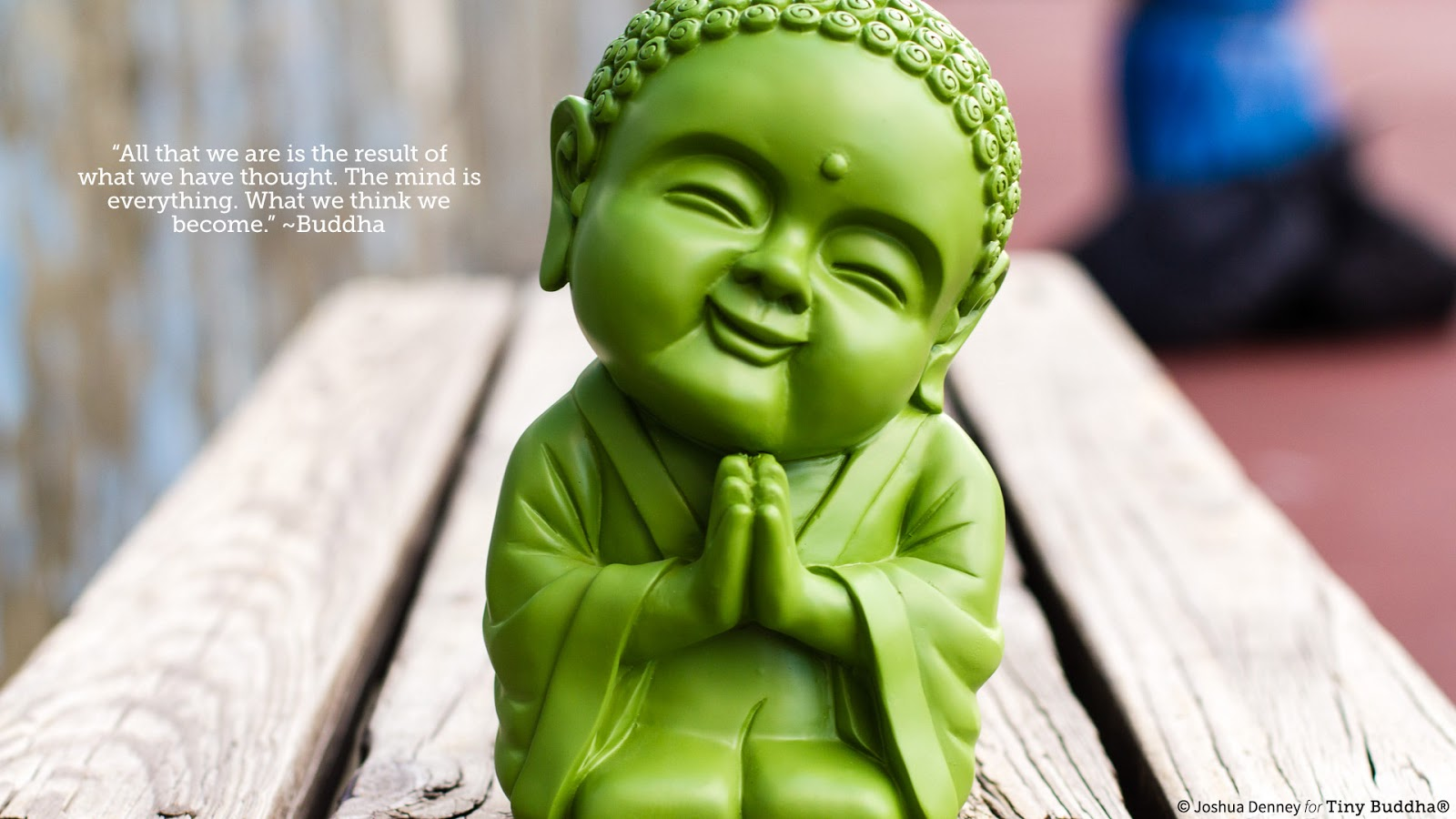 tiny green buddha wallpaper 5 Websites to change your way of thinking and habits