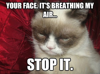Grumpy Cat Quotes   Funny Collection World