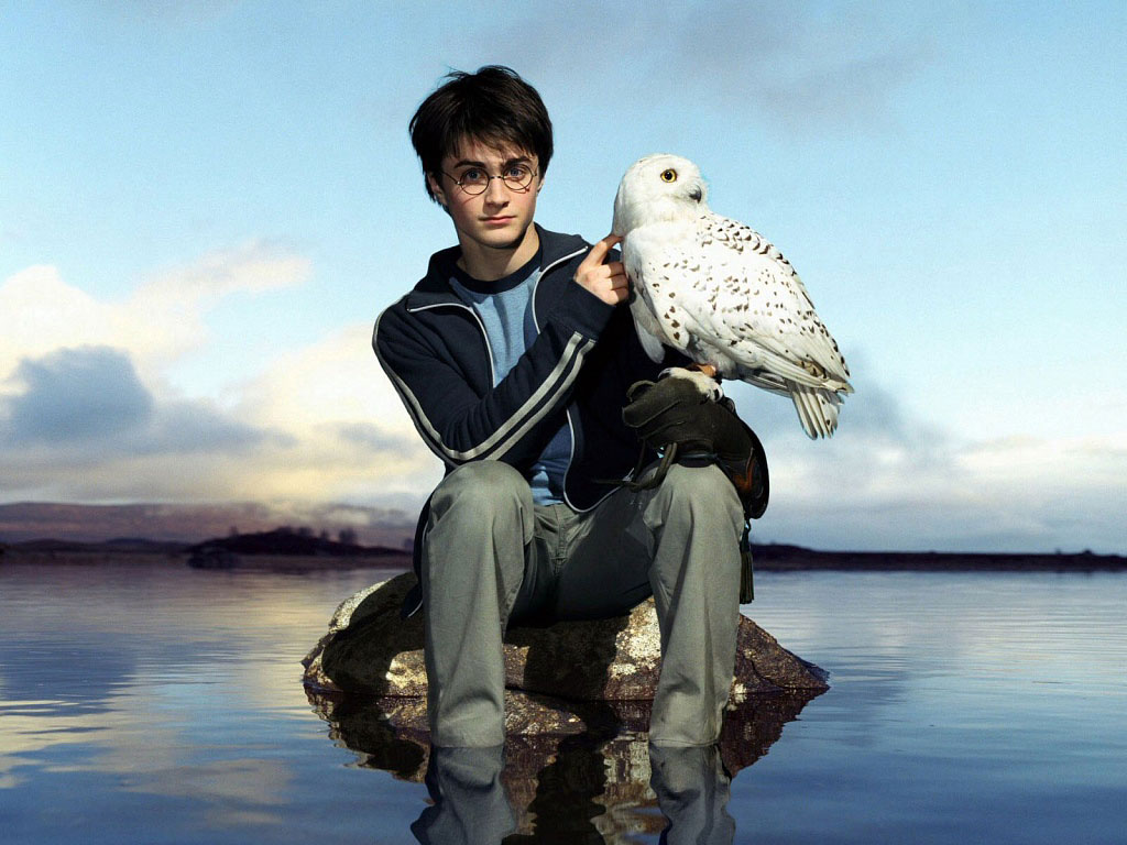 daniel radcliffe wallpapers photos - photo #37
