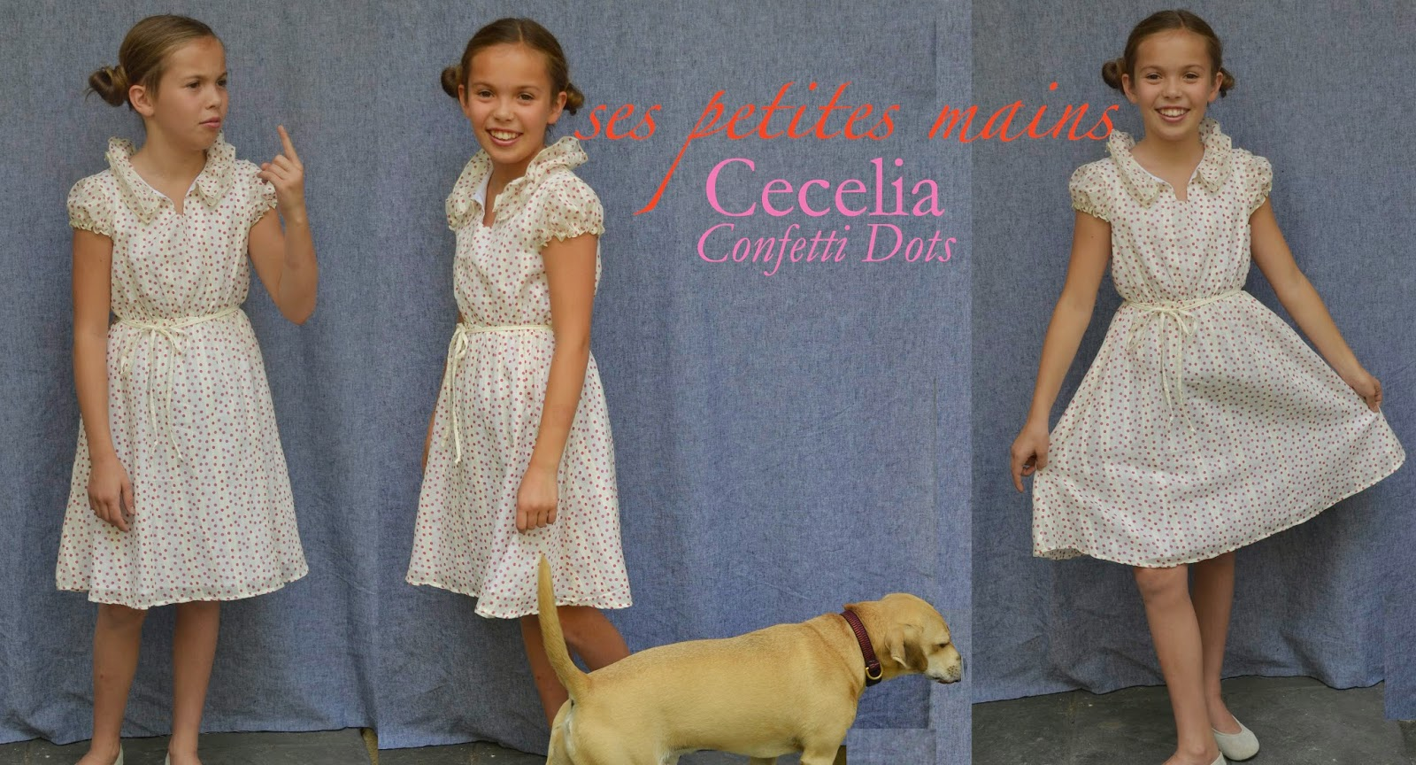 cecelia dress, special occasion dress for girls, tween special occasion dress, flower girl dress, featured in Martha Stewart Wedding, featured in Babiekins Magazine