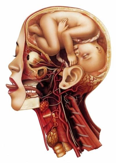 Foetus in Head by Trevor Brown