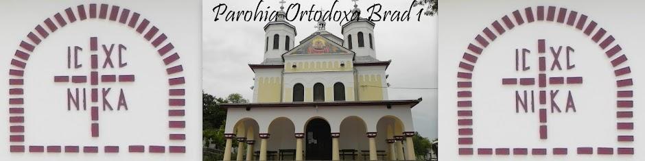 """Biserica Ortodoxă """"Adormirea Maicii Domnului"""" Brad"""