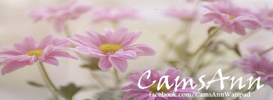 CamsAnn