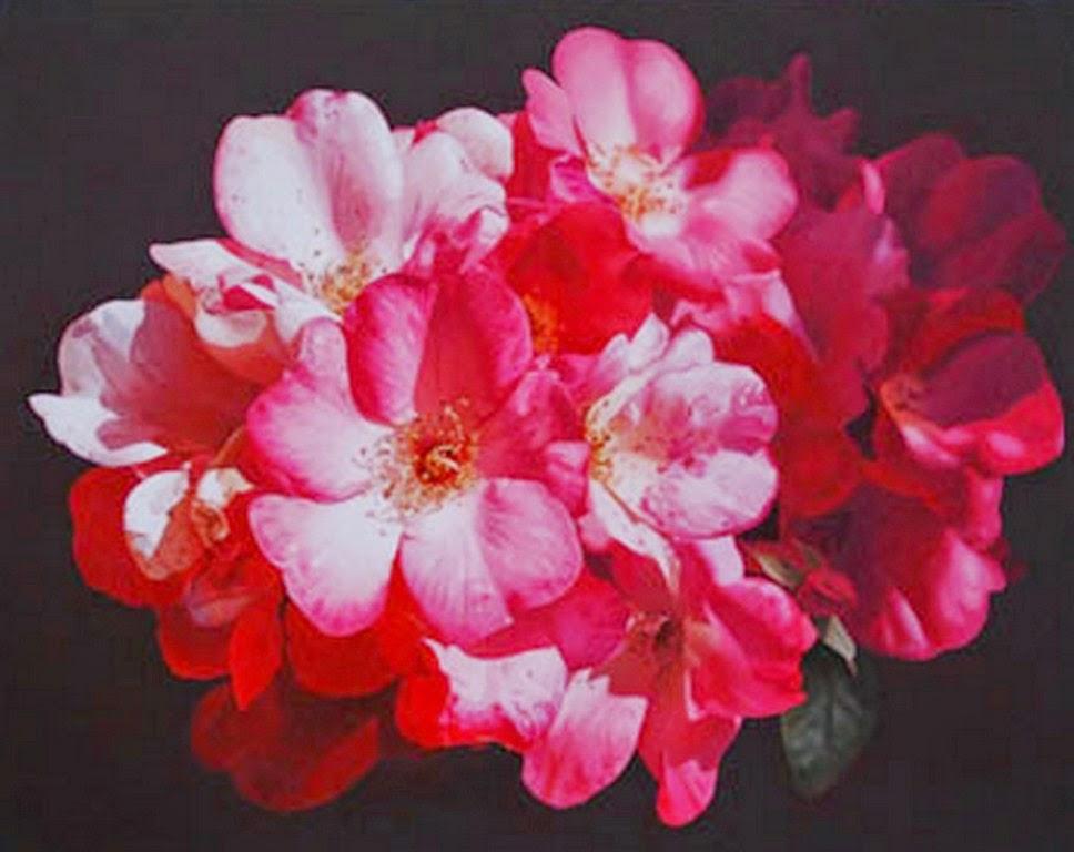 Fotos De Flores Decorativas - Fondo Con Las Flores Decorativas Imágenes de archivo