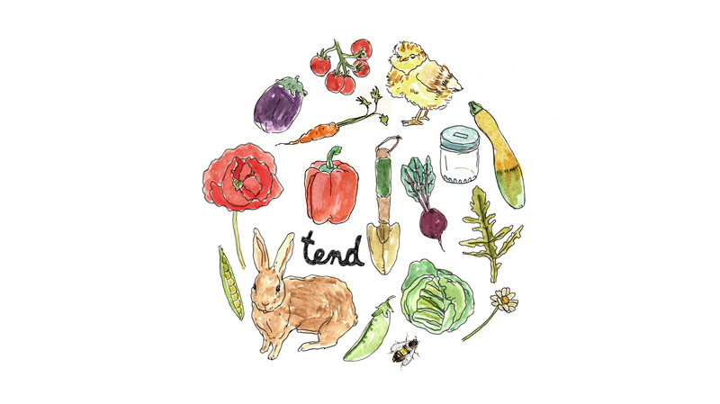 tend