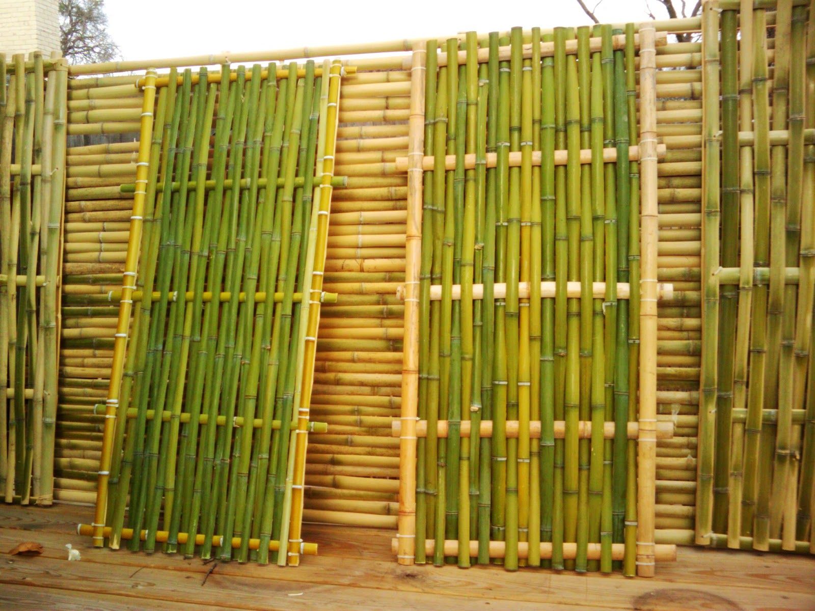 Bamboo Panels Products Photo