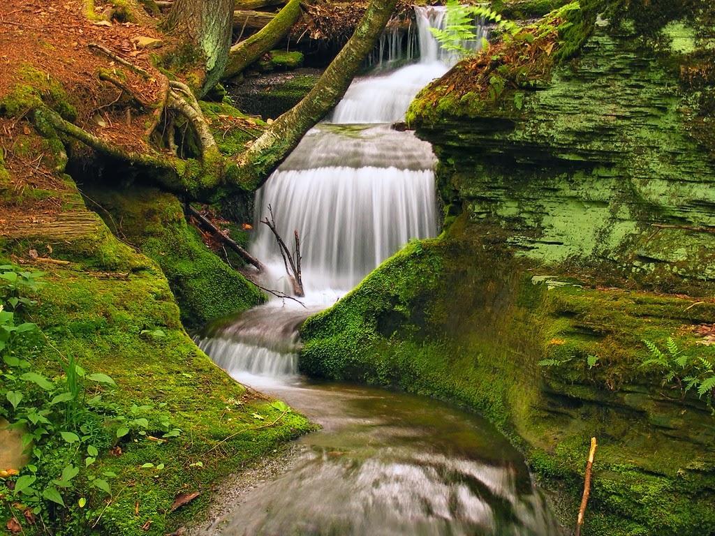 "<img src=""http://4.bp.blogspot.com/-TghXTrQ9Vdo/Ut5NWKzAscI/AAAAAAAAJks/MwCuSlyIm9I/s1600/peaceful-waterfall.jpeg"" alt=""peaceful waterfall"" />"