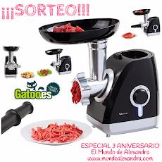 SORTEO ESPECIAL ANIVERSARIO CON GATOO.ES