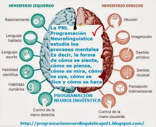 """La PNL Programación Neurolinguistica se apoya sobre """"el cómo"""" se hace, más que en el """"porque"""" se hace:"""