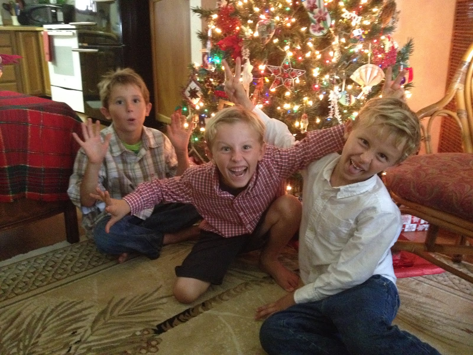 Love my 3 Grandsons!