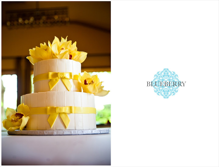 napa wedding photography outdoor vineyard brix yountville cake yellow bows