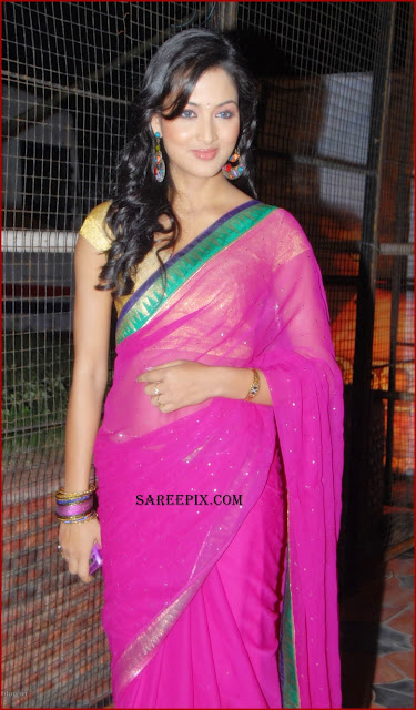 Devaraya mvie audio launch pics