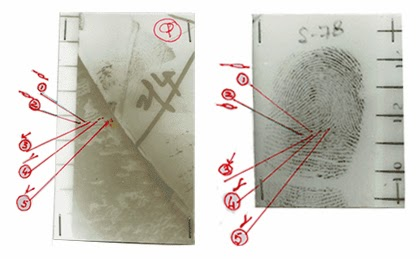 Forensic Handwriting