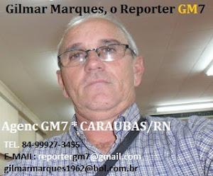 Reporter GM-7