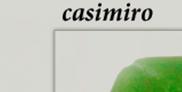 Casimiro Libros
