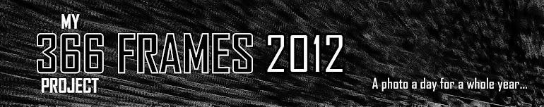366 FRAMES 2012
