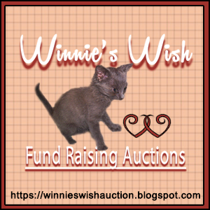 Winnie's Wish Insta-Auction