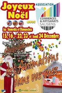 Animations de Noël 2012 à Salies de Béarn