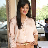 Vimala Raman Latest Photos in Jeans at Trendz Life Style Expo 2014 Inauguration 0041