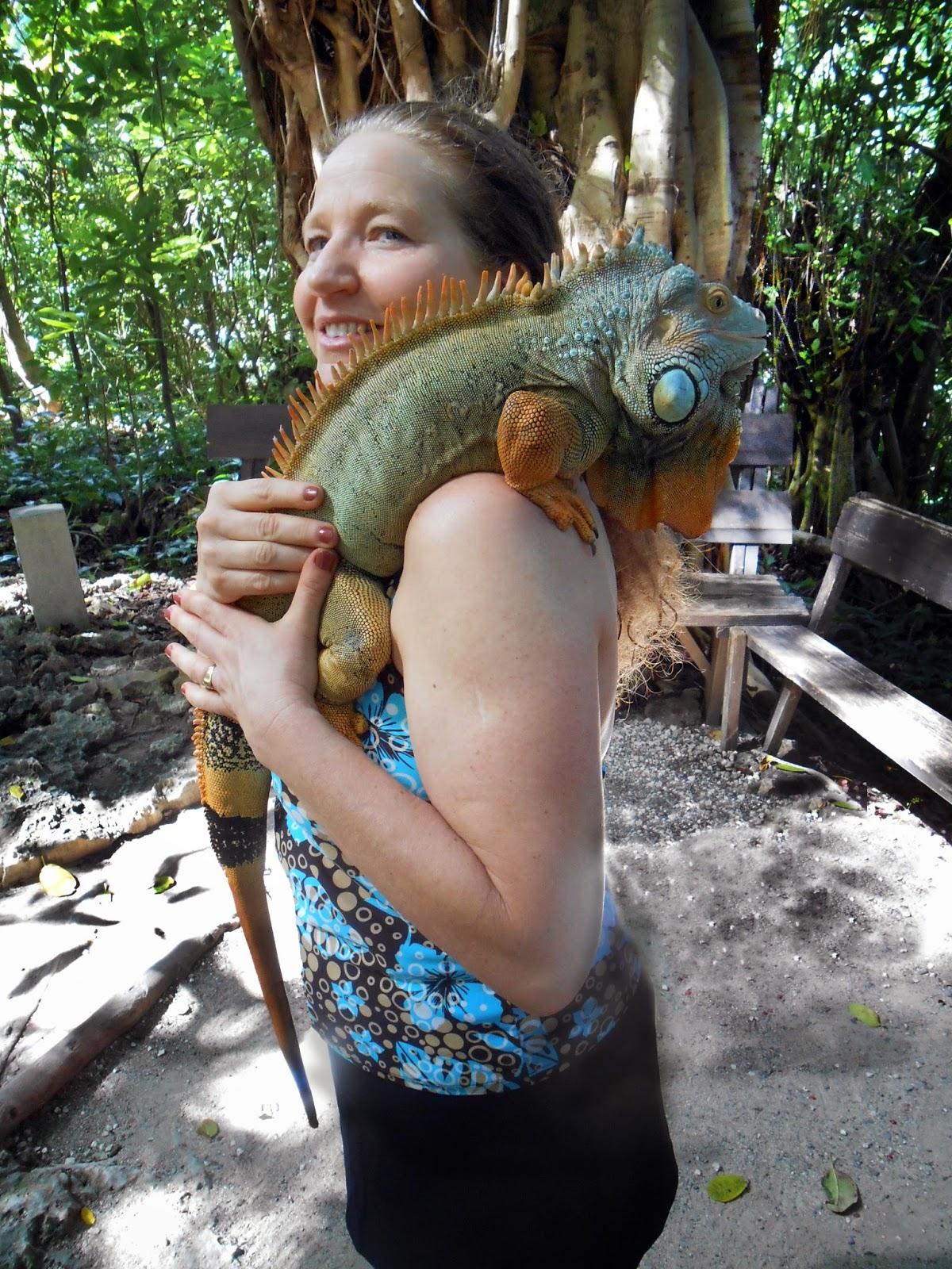 ship excursion | Iguana | Ocho Rios, Jamaica | Flying Dutchmen Travel