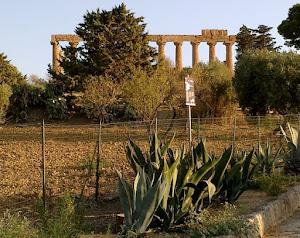 Il Tempio di Giumenta